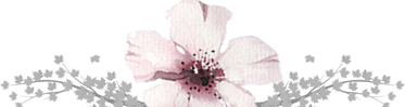 Separator asfendamos flower